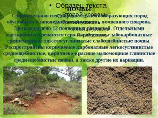 ПОЧВЫ Сравнительная неоднородность почвообразующих пород обусловили в заповед