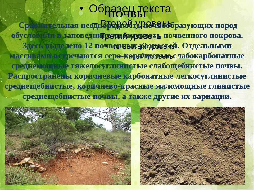 ПОЧВЫ Сравнительная неоднородность почвообразующих пород обусловили в заповед...