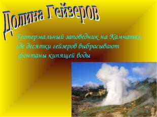 Геотермальный заповедник на Камчатке, где десятки гейзеров выбрасывают фонтан