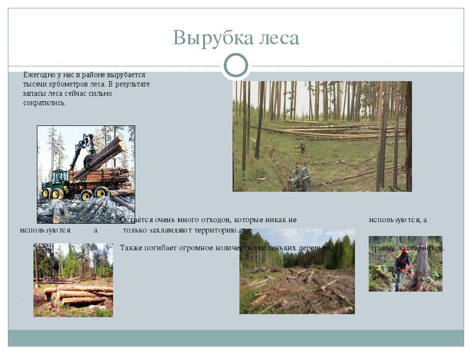 Вырубка леса Ежегодно у нас в районе вырубается тысячи кубометров леса. В рез...