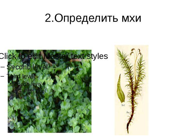 2.Определить мхи