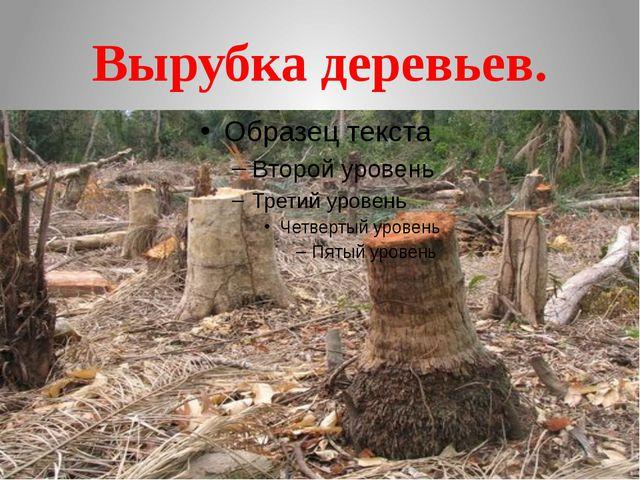 Вырубка деревьев.