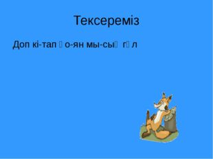 Тексереміз Доп кі-тап қо-ян мы-сық гүл