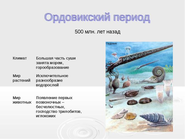500 млн. лет назад КлиматБольшая часть суши занята морем, горообразование Ми...