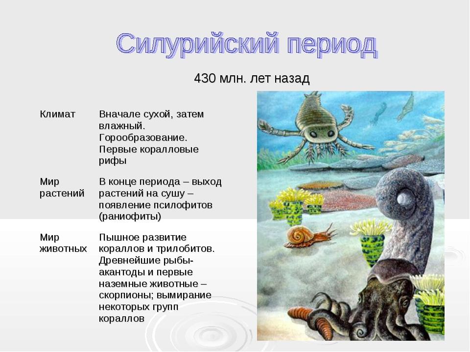 430 млн. лет назад КлиматВначале сухой, затем влажный. Горообразование. Перв...