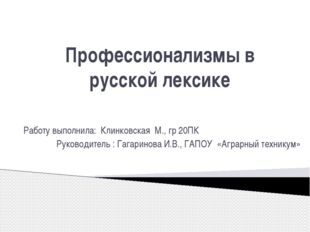 Профессионализмы в русской лексике Работу выполнила: Клинковская М., гр 20ПК