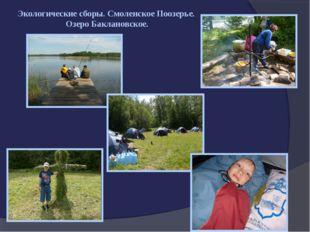 Экологические сборы. Смоленское Поозерье. Озеро Баклановское.