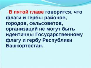 В пятой главе говорится, что флаги и гербы районов, городов, сельсоветов, ор
