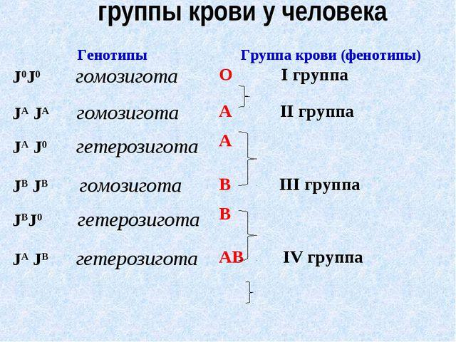 группы крови у человека ГенотипыГруппа крови (фенотипы) J0J0 гомозиготаО I...