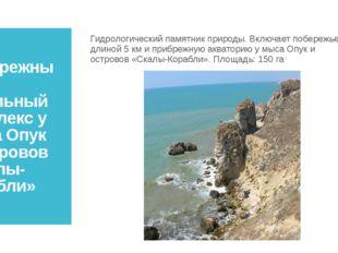 Прибрежный аквальный комплекс у мыса Опук и островов «Скалы-Корабли» Гидролог