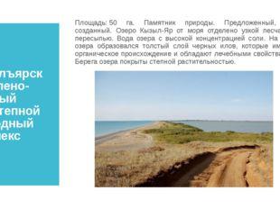 Кызылъярский солено-озерный сухостепной природный комплекс Площадь:50 га. Па