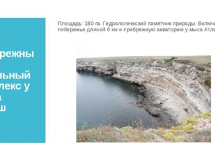 Прибрежный аквальный комплекс у мыса Атлеш Площадь:180 га. Гидрологический п