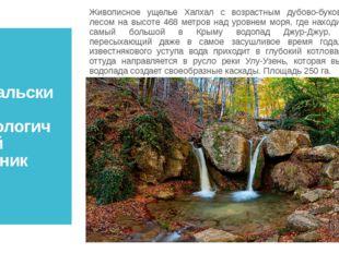 Хапхальский гидрологический заказник Живописное ущелье Хапхал с возрастным ду