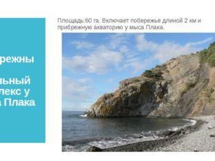 Прибрежный аквальный комплекс у мыса Плака Площадь:60 га. Включает побережье