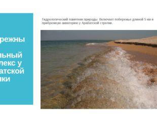Прибрежный аквальный комплекс у Арабатской стрелки Гидрологический памятник п