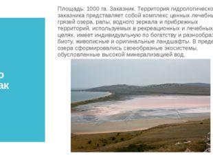 Озеро Чокрак Площадь:1000 га. Заказник. Территория гидрологического заказник