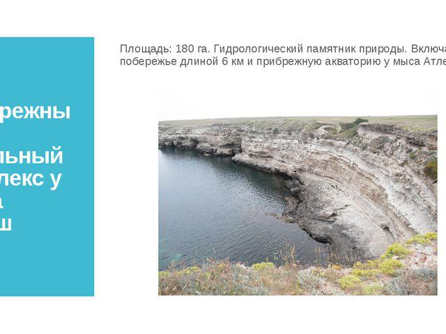 Прибрежный аквальный комплекс у мыса Атлеш Площадь:180 га. Гидрологический п...