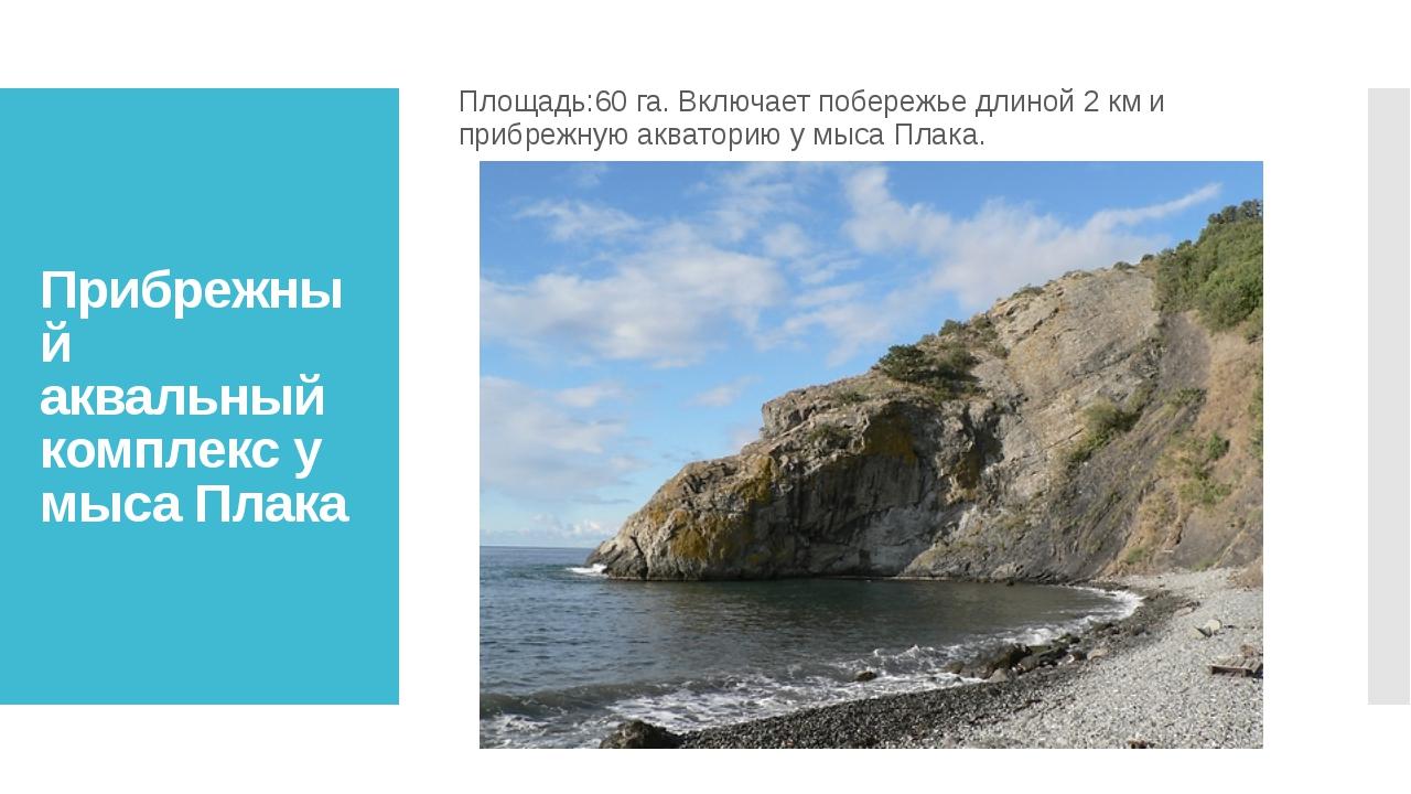 Прибрежный аквальный комплекс у мыса Плака Площадь:60 га. Включает побережье...