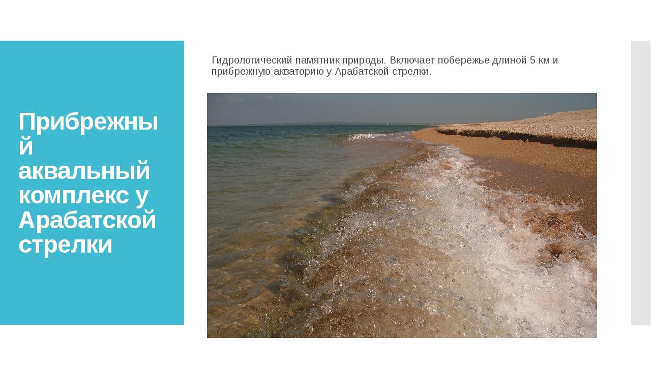 Прибрежный аквальный комплекс у Арабатской стрелки Гидрологический памятник п...