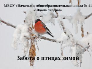 МБОУ «Начальная общеобразовательная школа № 41 «Школа лидеров» Забота о птица