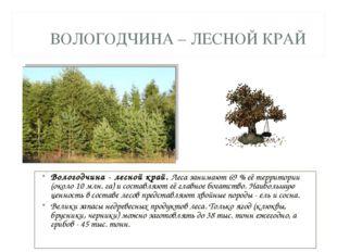 ВОЛОГОДЧИНА – ЛЕСНОЙ КРАЙ Вологодчина - лесной край. Леса занимают 69 % её те