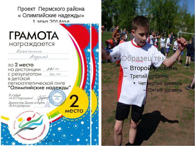 Проект Пермского района « Олимпийские надежды» 1 этап 2014год