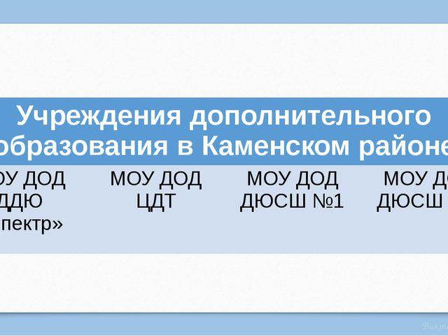 Учреждения дополнительного образования в Каменском районе МОУ ДОД ДДЮ «Спектр...