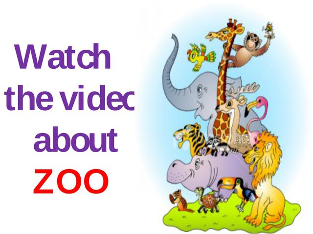 Watch the video about ZOO