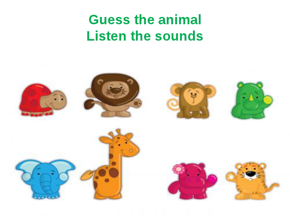 Guess the animal Listen the sounds