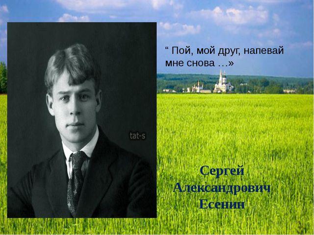 """Сергей Александрович Есенин """" Пой, мой друг, напевай мне снова …»"""