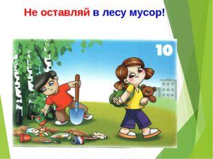 Не оставляй в лесу мусор!