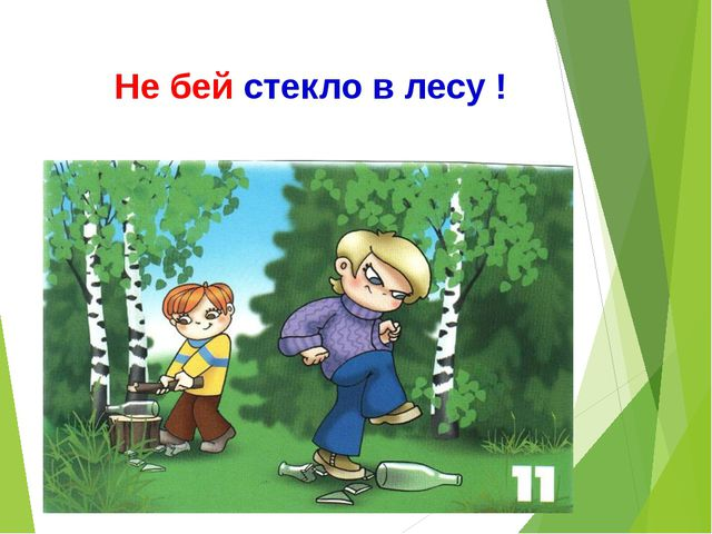 Не бей стекло в лесу !