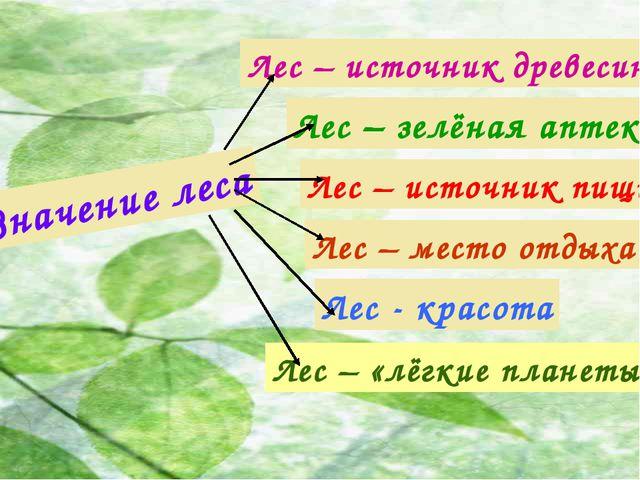 Значение леса Лес – источник древесины Лес – зелёная аптека Лес – место отдых...