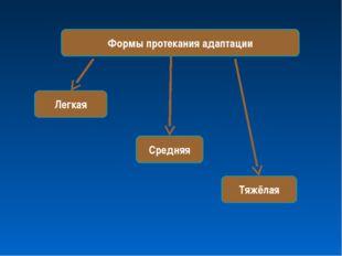 Формы протекания адаптации Тяжёлая Средняя Легкая
