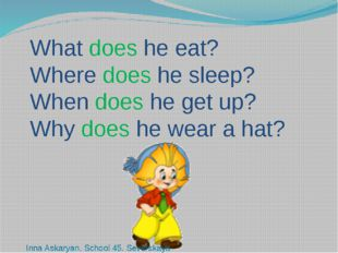 What does he eat? Where does he sleep? When does he get up? Why does he wear