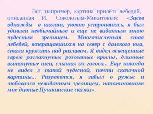 Вот, например, картина прилёта лебедей, описанная И. Соколовым-Микитовым: «З