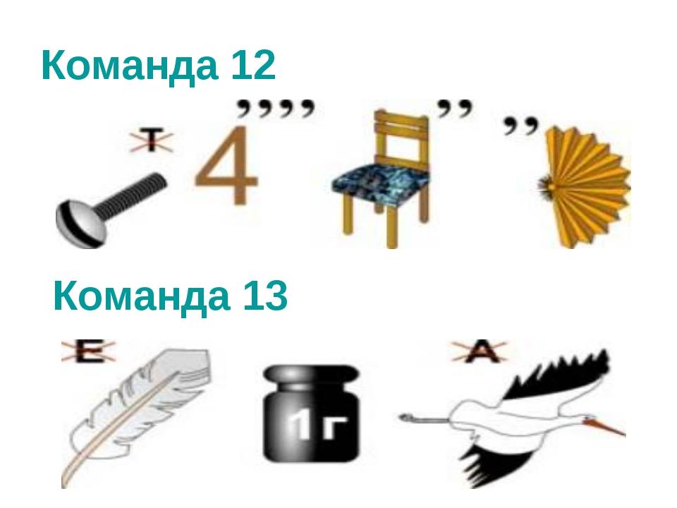 Команда 12 Команда 13