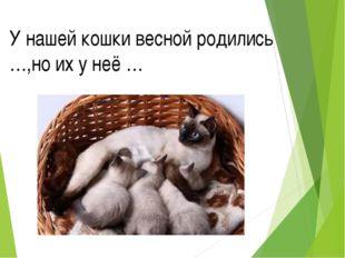 У нашей кошки весной родились …,но их у неё …