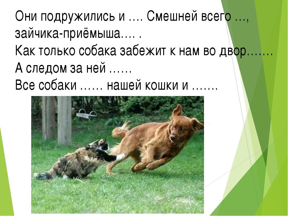 Они подружились и …. Смешней всего …, зайчика-приёмыша…. . Как только собака...