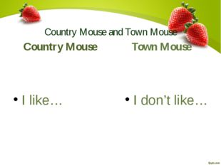 Country Mouse and Town Mouse Country Mouse I like… Town Mouse I don't like…