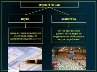 Изучается как наука хозяйство способ организации деятельности людей по создан