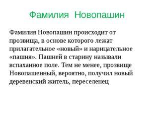 Фамилия Новопашин Фамилия Новопашин происходит от прозвища, в основе которого