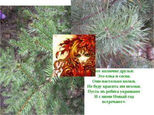 Вот колючие друзья: Это елка и сосна. Они настолько колки, Не буду красить им