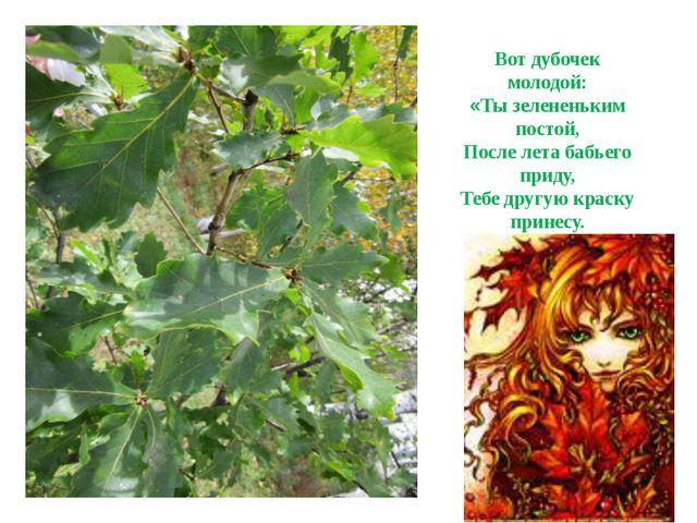 Вот дубочек молодой: «Ты зелененьким постой, После лета бабьего приду, Тебе д...