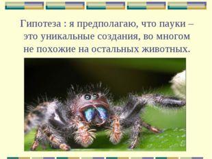 Гипотеза : я предполагаю, что пауки – это уникальные создания, во многом не п