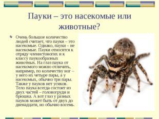 Пауки – это насекомые или животные? Очень большое количество людей считает, ч
