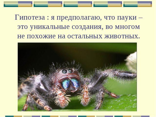 Гипотеза : я предполагаю, что пауки – это уникальные создания, во многом не п...