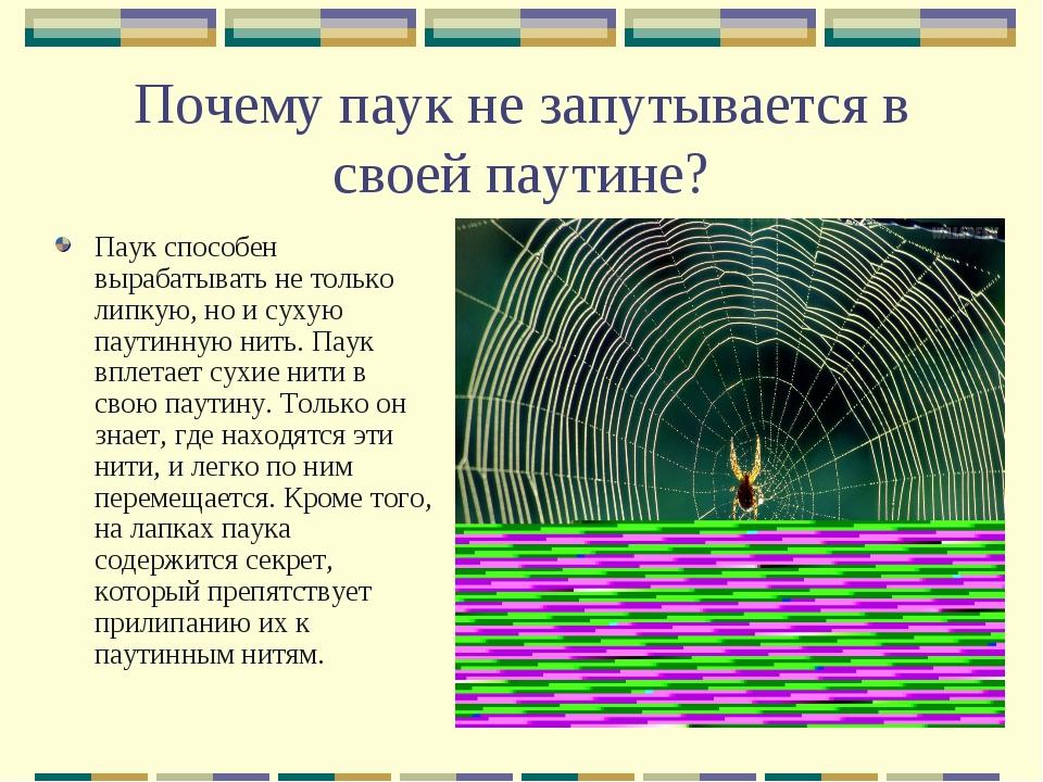 Почему паук не запутывается в своей паутине? Паук способен вырабатывать не то...