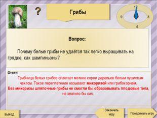 12 3 6 9 Ответ: Грибница белых грибов оплетает мелкие корни деревьев белым пу