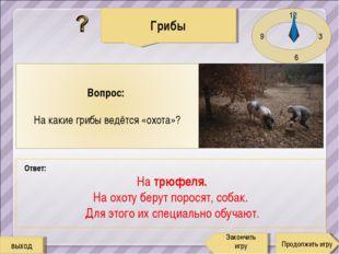 12 3 6 9 Ответ: На трюфеля. На охоту берут поросят, собак. Для этого их специ